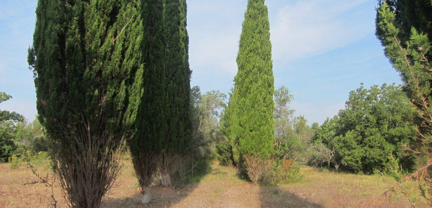 Bagnols en foret, mas en pierre sur 3 hectares.